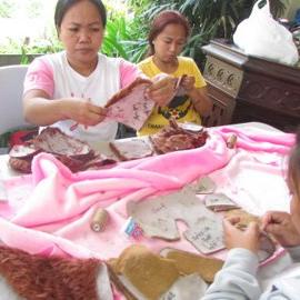Livelihood Programs 1